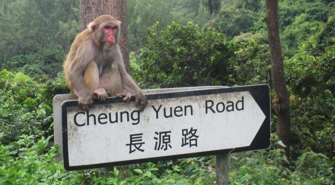 Monkey HIll Hong Kong Kam Shan Country Park
