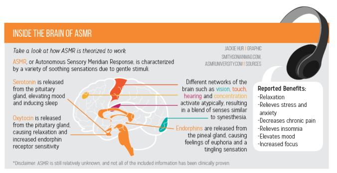 ASMR theory