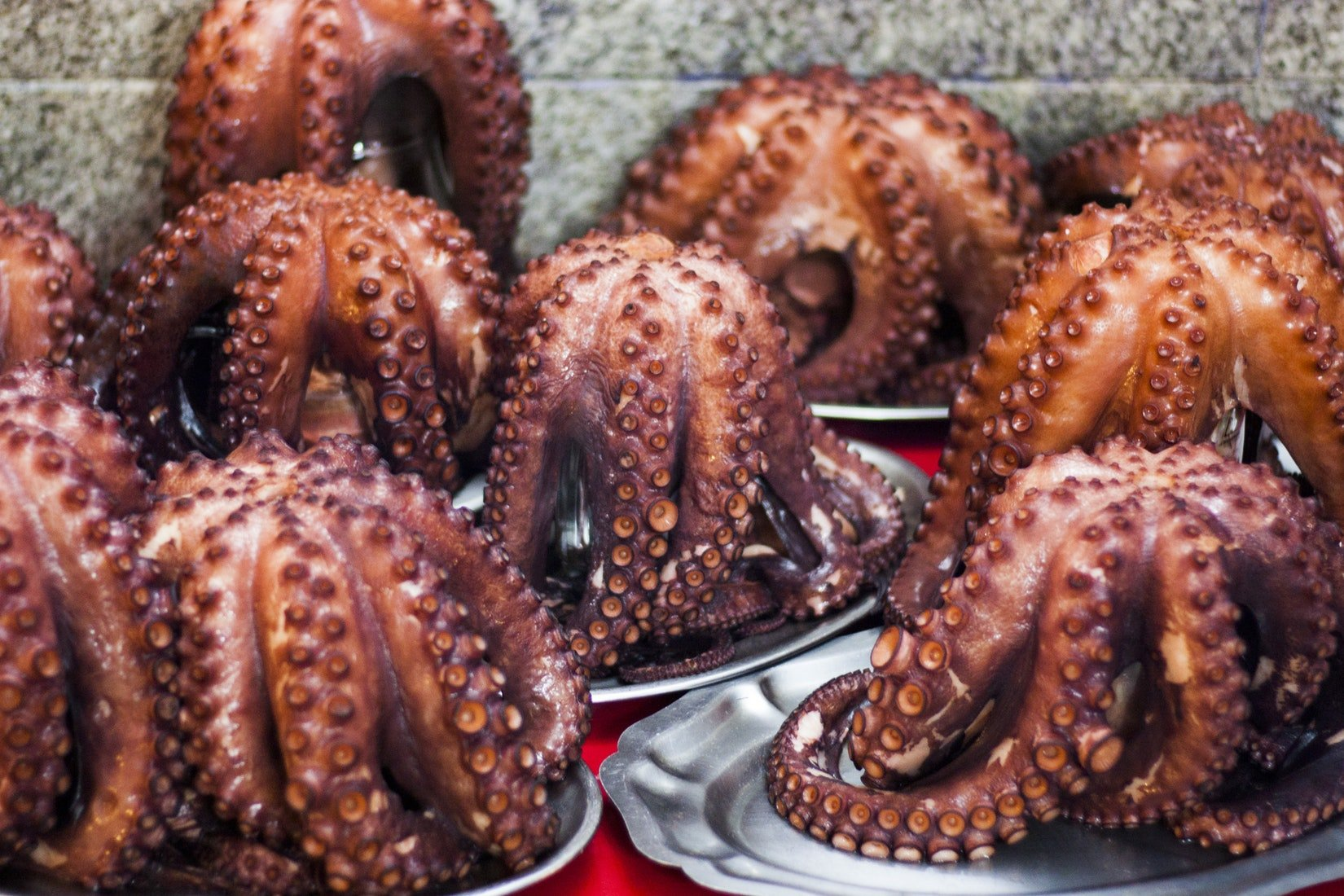 Plates of pulpo gallego (Spanish octopus)